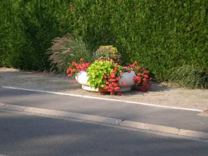 jardiniere_1
