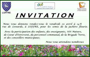 Invitation Jachere fleurie